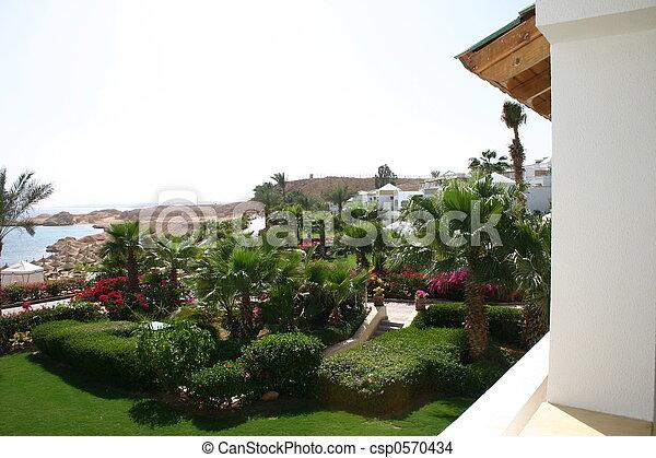 Sharm Resort - csp0570434