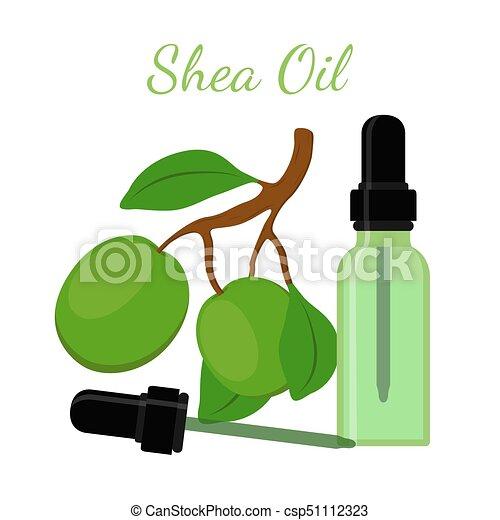 Shea nut, oil in bottle. Cartoon flat style. Vector illustration - csp51112323