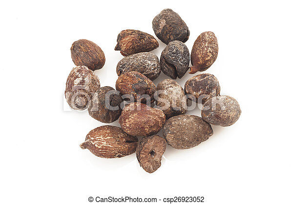shea nuts on white background, karite seeds - csp26923052