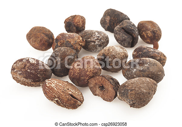 shea nuts on white background, karite seeds - csp26923058