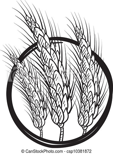 Sheaf of wheat vector - csp10381872