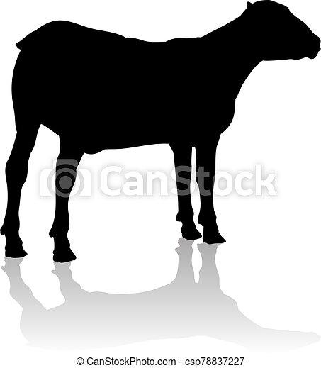 sheep, cordero, silueta, o, animal granja - csp78837227
