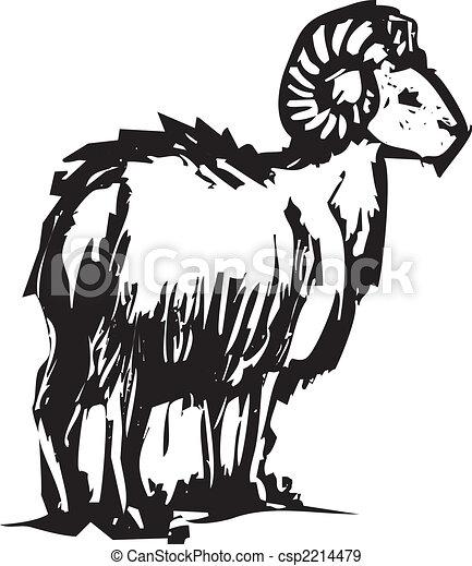 Gran oveja cornuda - csp2214479