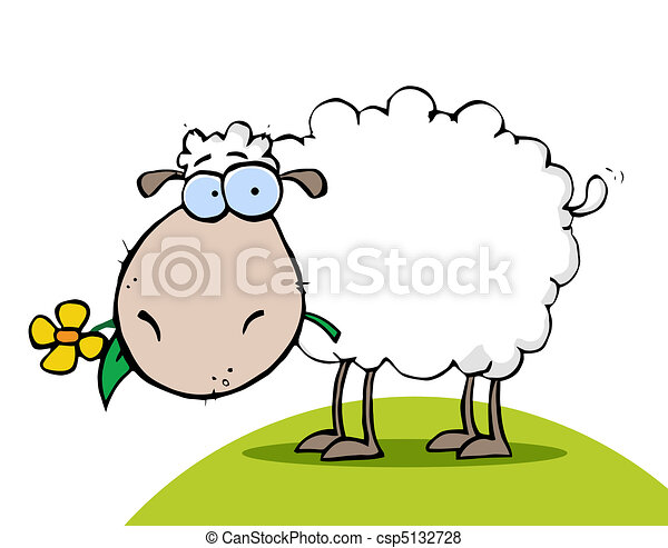 Sheep Eating A Flower On A Hill - csp5132728