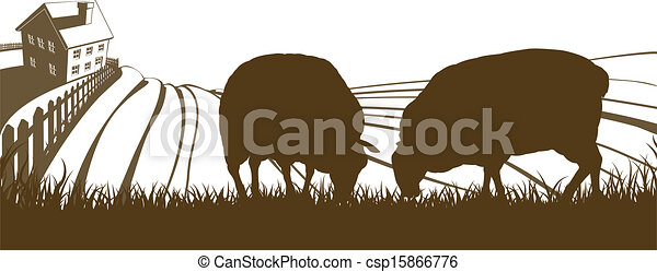 Sheep Farm Rolling Hills Landscape - csp15866776