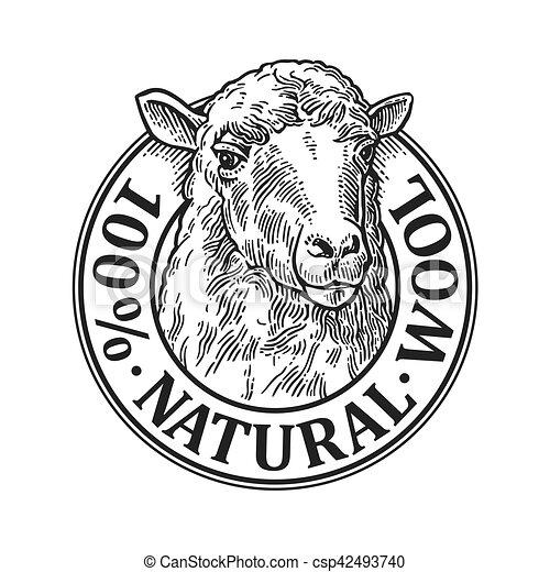Sheep Head 100 Natural Wooll Lettering Vintage Vector Engraving Illustration