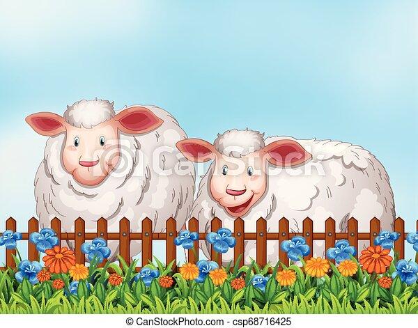 Sheep in the garden - csp68716425