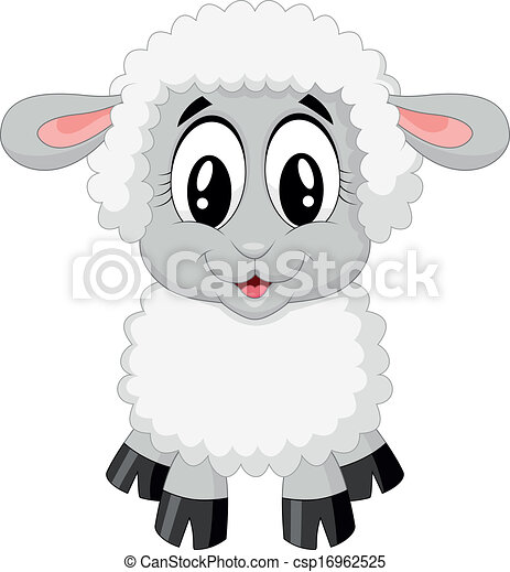Lindo dibujo de ovejas - csp16962525