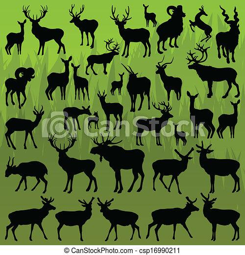 Ciervos, alces y ovejas montañosas vector de animales - csp16990211