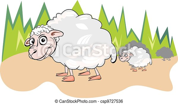Sheep or Ovis aries, illustration - csp9727536