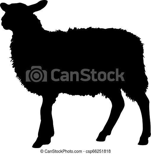Silueta de ovejas - csp66251818