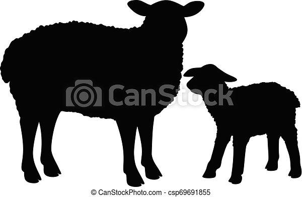 Silueta de ovejas - csp69691855