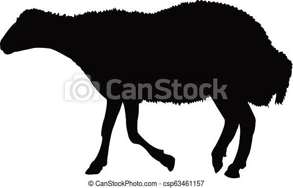 Un vector de silueta de oveja - csp63461157