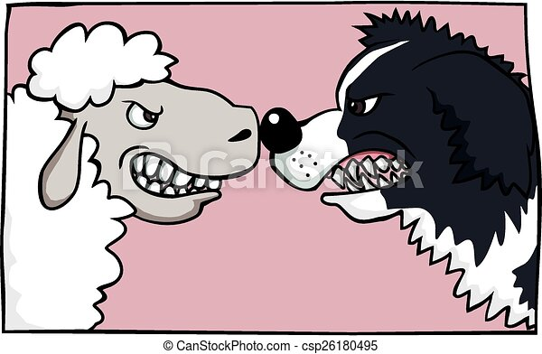 Line Drawing Of Sheep Face : Sheep vs collie a face off between border and eps