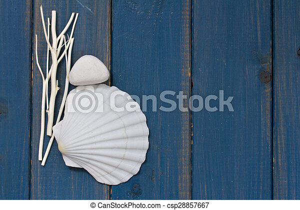 shell on blue wooden background - csp28857667