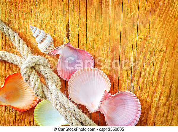 shells on wooden background - csp13550805