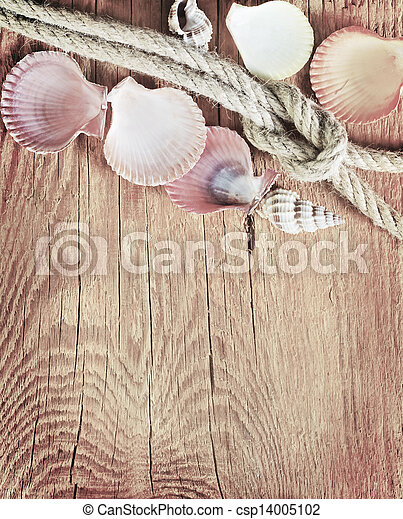 shells on wooden background - csp14005102