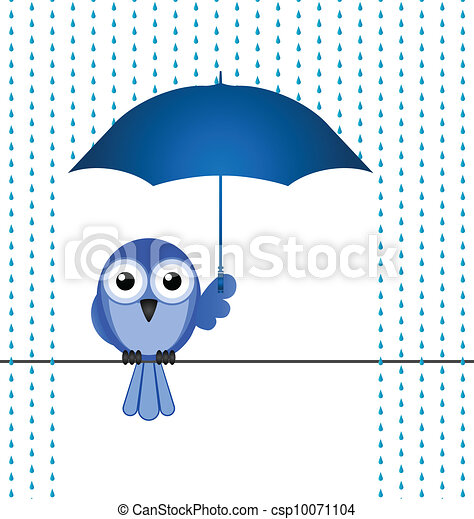 sheltering from the rain  - csp10071104