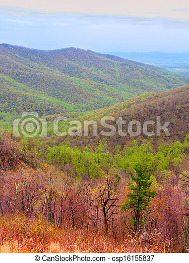 Shenandoah National Park of Virginia - csp16155837
