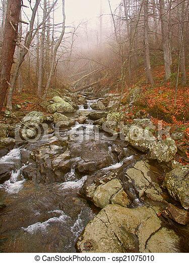 Shenandoah National Park Virginia - csp21075010