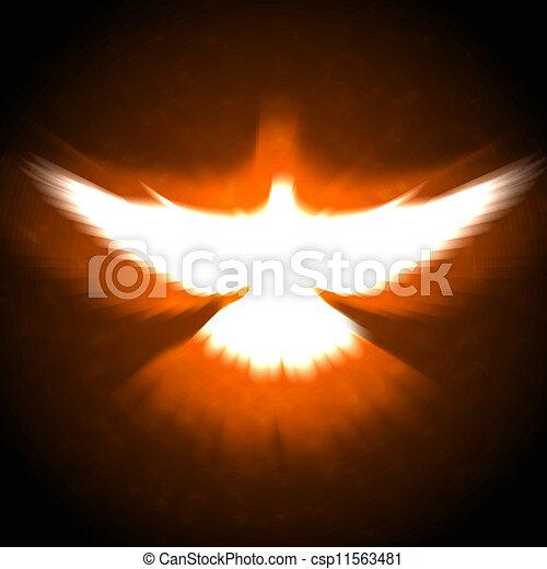 shining dove with rays on a dark - csp11563481