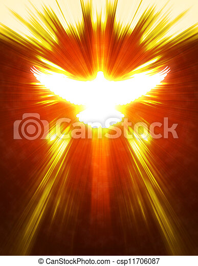 shining dove with rays on a dark - csp11706087
