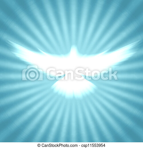 shining dove with rays on a dark - csp11553954