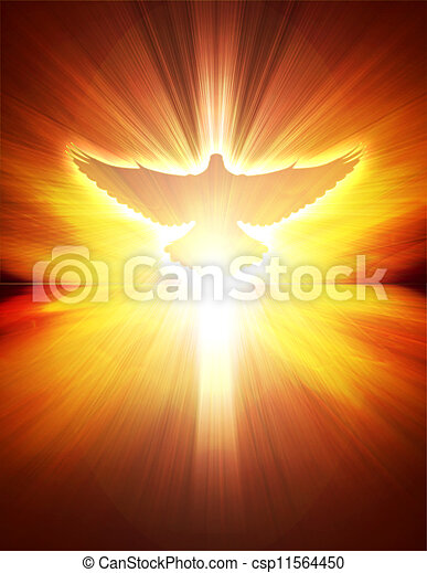 shining dove with rays on a dark - csp11564450