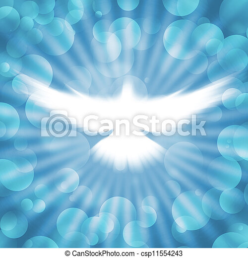 shining dove with rays on a dark - csp11554243