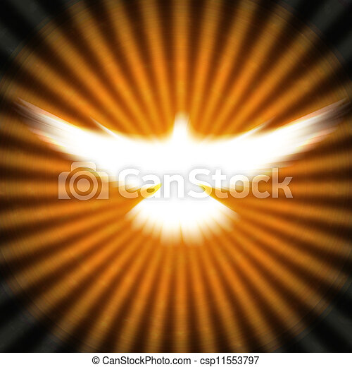 shining dove with rays on a dark - csp11553797