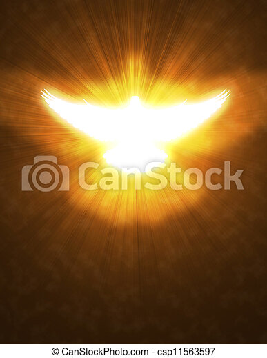 shining dove with rays on a dark - csp11563597