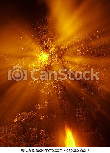shining through - csp0022930