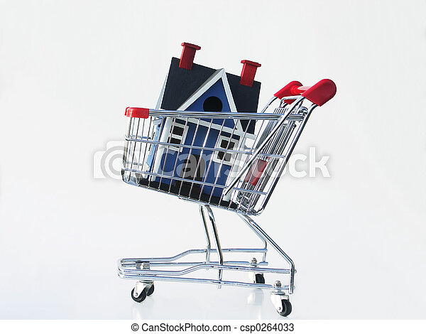 Shopping for a home - csp0264033