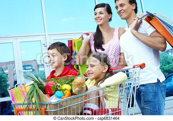 Shopping weekend  - csp6831464
