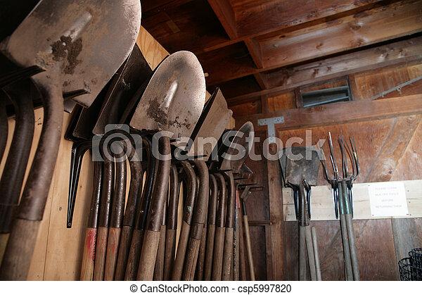 Superieur Shovels Inside Garden Shed   Csp5997820