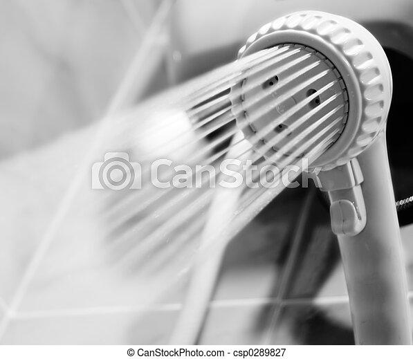 showerhead - csp0289827