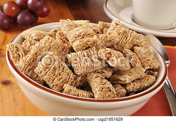 Shredded organic wheat cereal - csp21851629