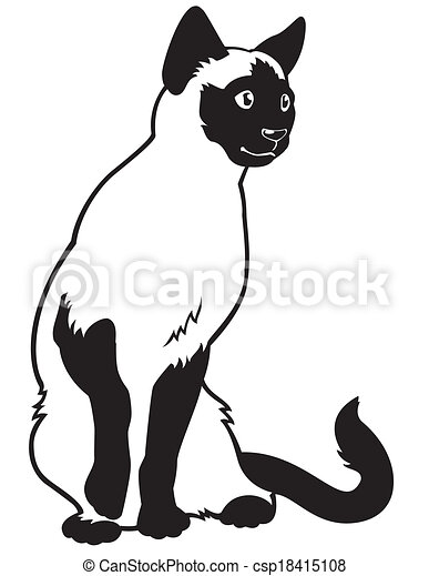 Siamese cat black white csp18415108