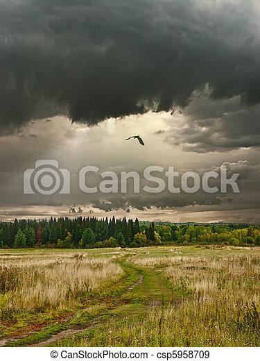 Siberian landscape - csp5958709