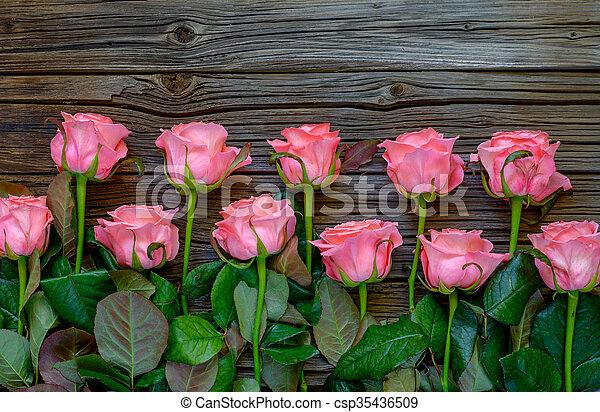 Side Border Of Beautiful Fresh Pink Roses Symbolic Of Love And