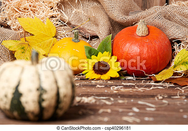 Side view of a green pumpkin on a wooden table - csp40296181