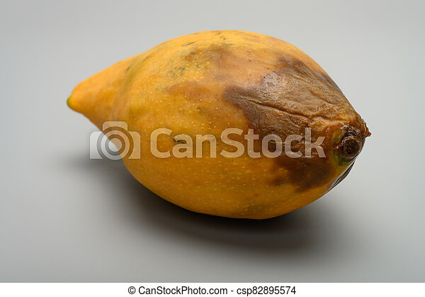 side view rotten mango close up on a grey background - csp82895574