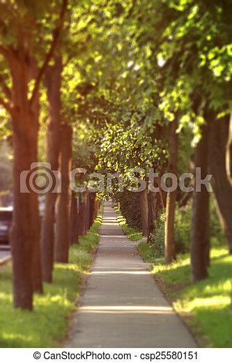 sidewalk in the city - csp25580151