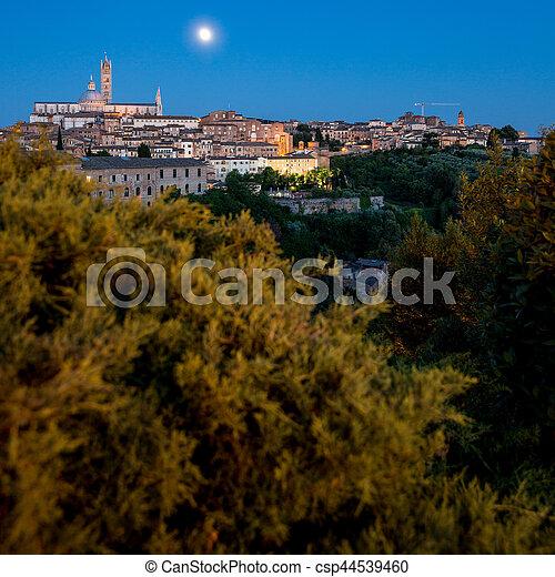 Siena, Tuscany, Italy - csp44539460