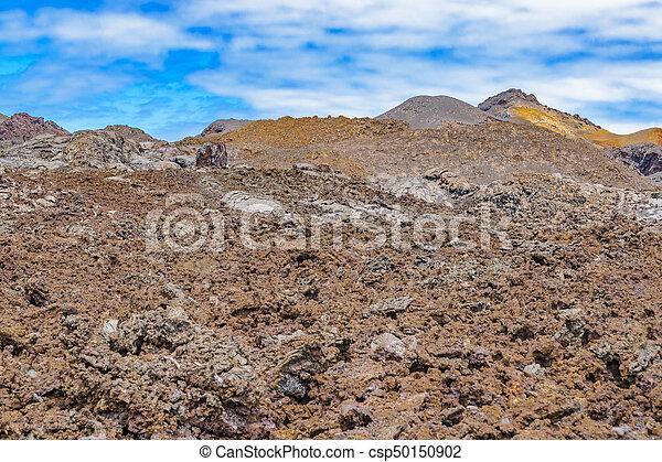 Sierra Negra Volcano, Galapagos, Ecuador - csp50150902