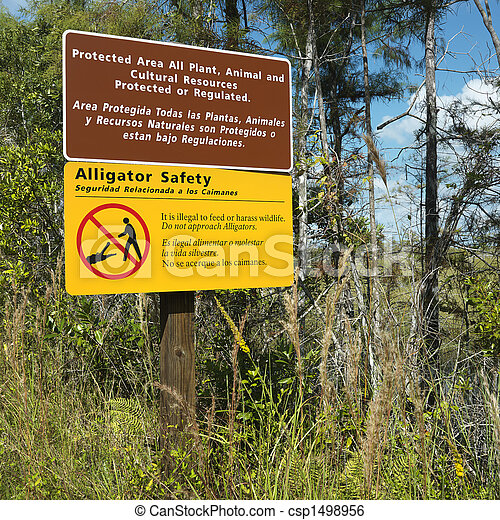 Sign in Florida Everglades. - csp1498956