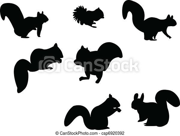 silhouette, écureuil - csp6920392