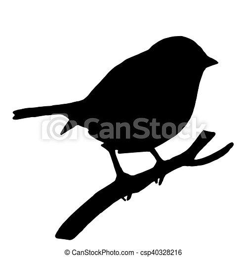 Silhouette Eleve Branche Cendre Qualite Oiseau Silhouette