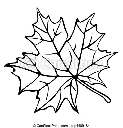 silhouette, bianco, foglia, acero, fondo - csp4489184