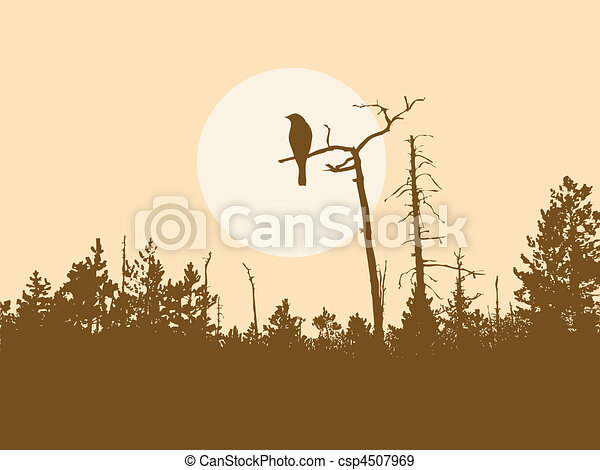 silhouette bird on tree        - csp4507969